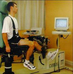 entrenamiento rendimiento fisico fuerza